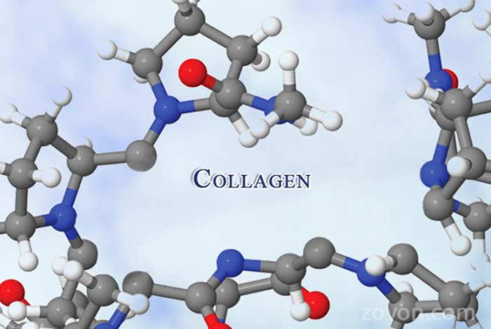 collagen structure products side effects & faqs