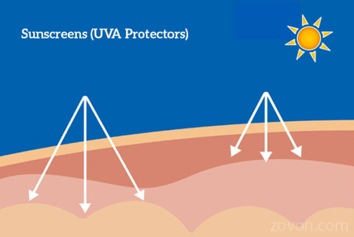 sunscreens uva protectors types benefits & side effects