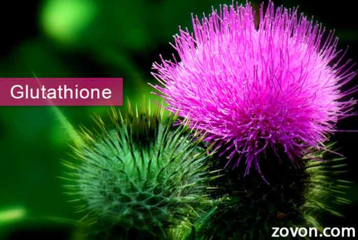 glutathione sources benefits side effects & faqs
