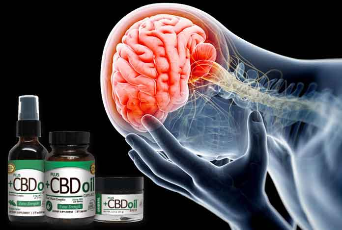 source of CBD-Oil-how-does-CBD-Oil-it-work-on-human-body