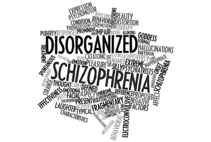 blockage in brains communication network result of schizophrenia