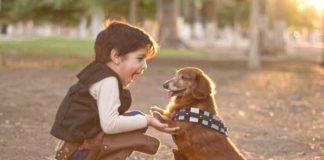 dogs can lower symptoms of asthma and reduce eczema risk in children