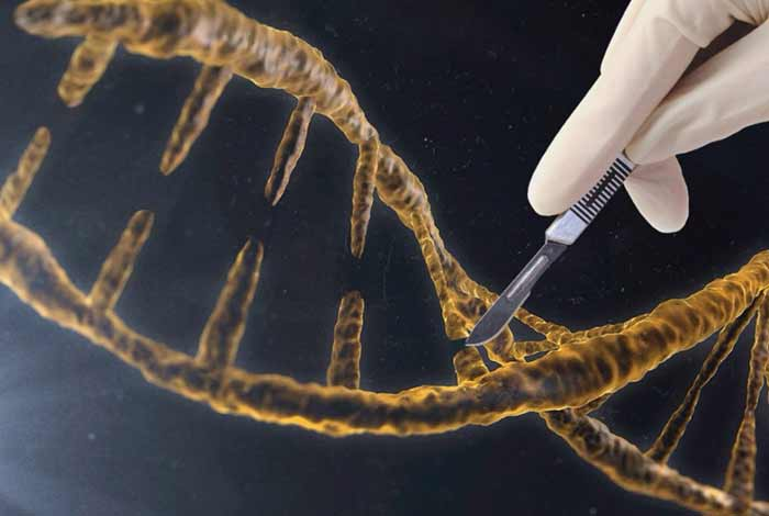 gene editing could help fight against various deadly diseases