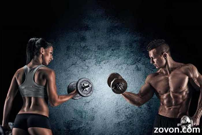 how to build muscle foods exercises and supplements