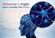 alzheimers disease might start outside the brain