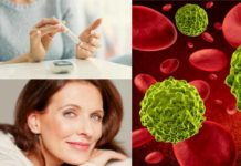 Anti-aging proteins for the treatment of cancer, obesity and diabetes
