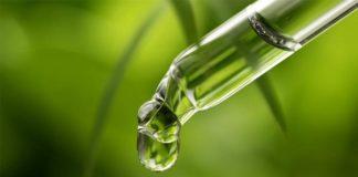 Know CBD/CBD Oil and its Derivative