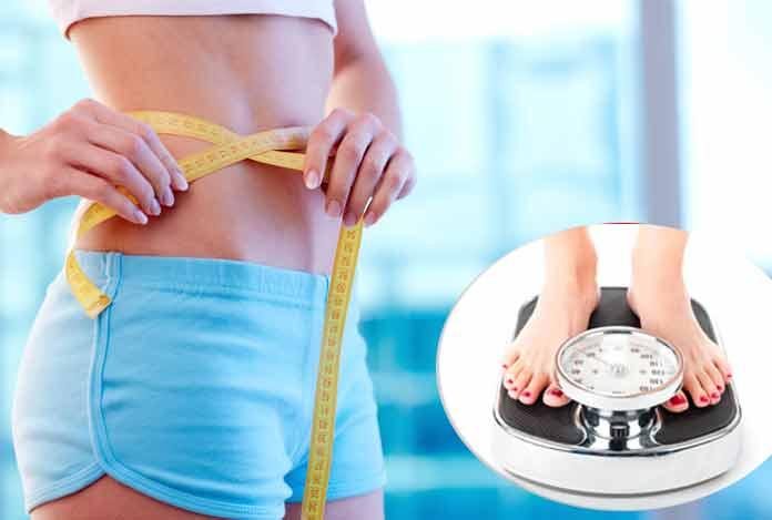 Weight Loss Diet Plans