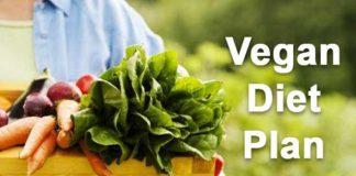 vegan diet plan go organic