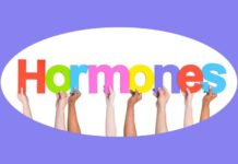 Hormones – The Secret to Healthy Metabolism
