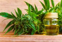 applications of cbd oil and its limitations
