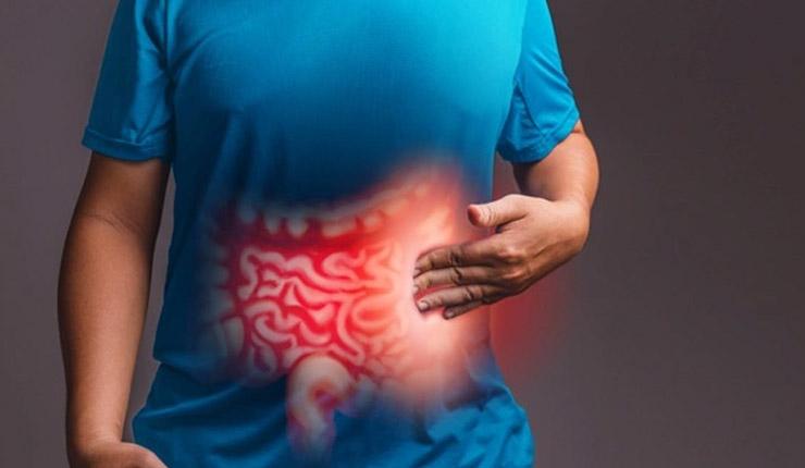 Boosts-intestinal-health